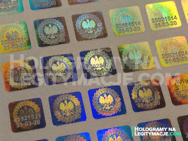 Allegro, OLX, Gumtree – czy warto kupować tam hologramy na legitymacje studenckie