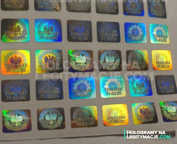 hologramy do legitymacji els
