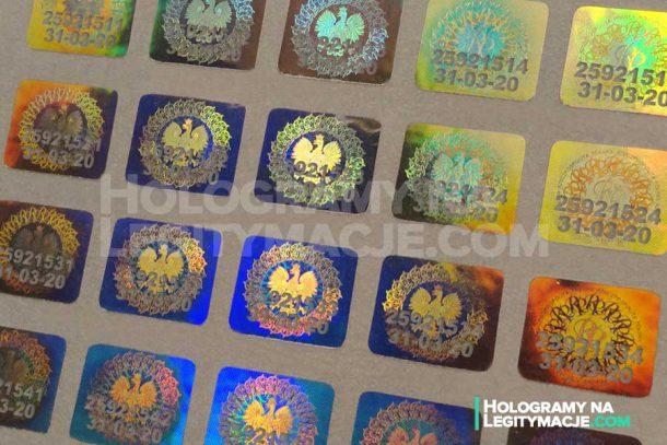 hologram legitymacja studencka