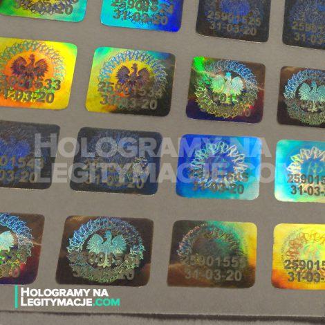 numery seryjne na hologramie i legitymacji