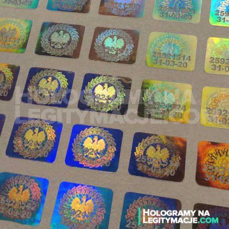 hologram na legitymacje opinie